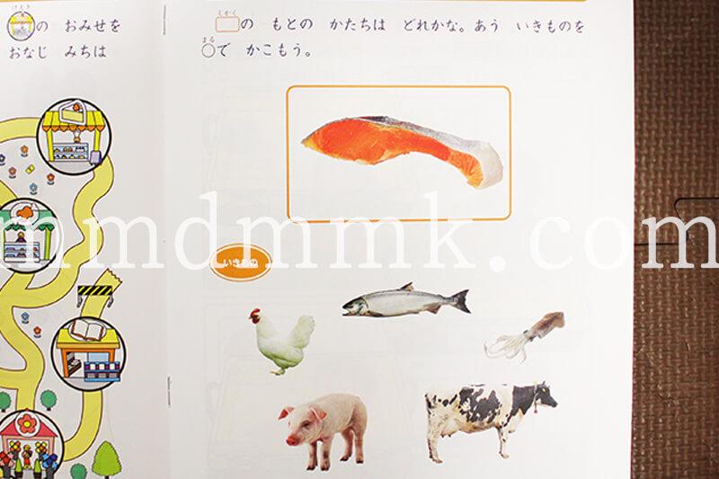 Z会幼児コース年中の教材の写真
