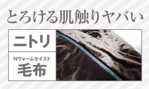 ニトリNウォームモイスト毛布記事アイキャッチ画像
